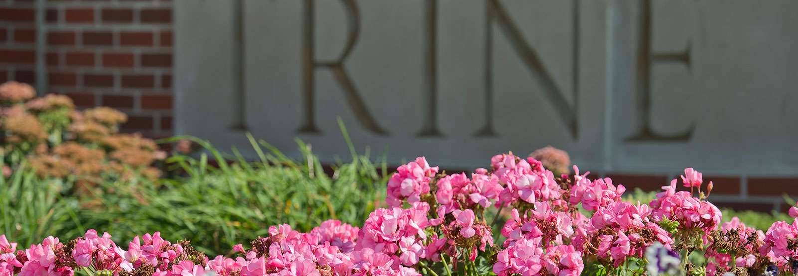 Flowers and Trine sign